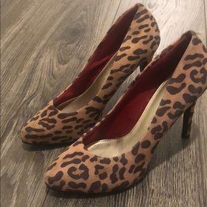 Leopard heals